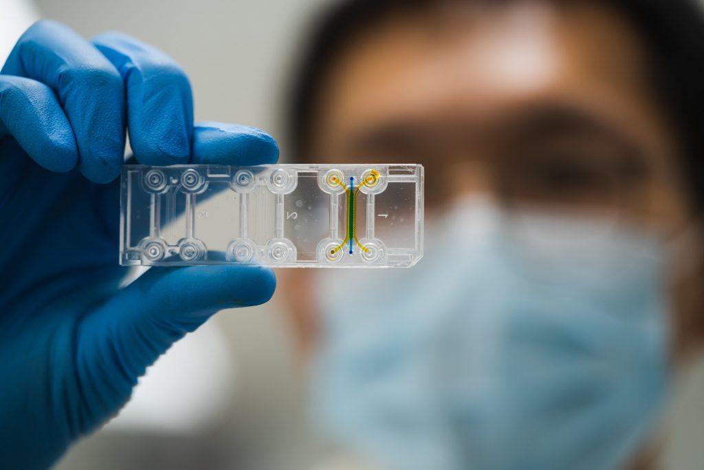 Human Biology-on-a-Chip