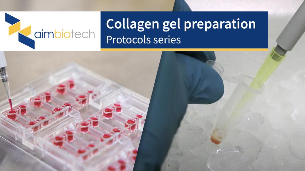 collagen gel preparation