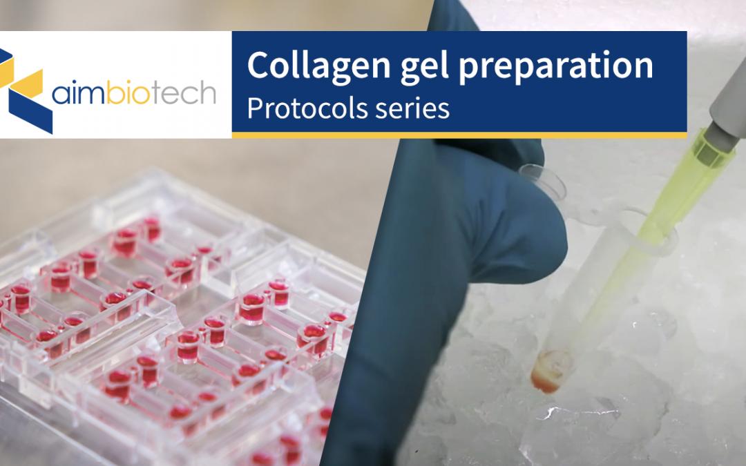 1. Collagen Gel Preparation