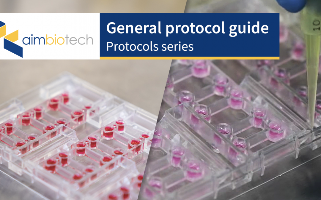 General Protocol Guide