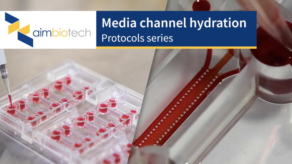 media channel hydration