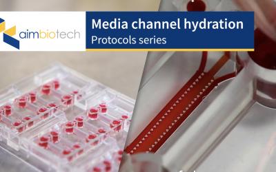 3. Media Channel Hydration
