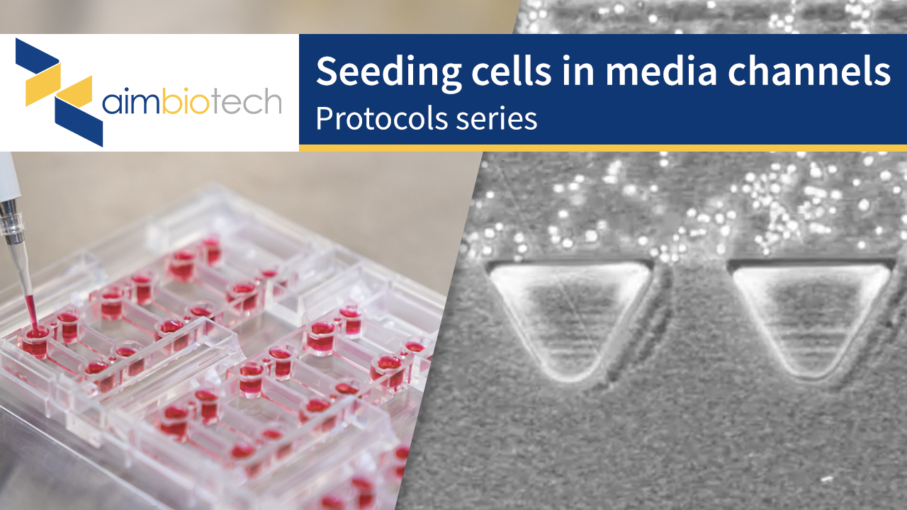 4. Seeding Cells in Media Channels