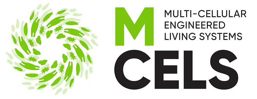 M-CELS – where biology and engineering meet