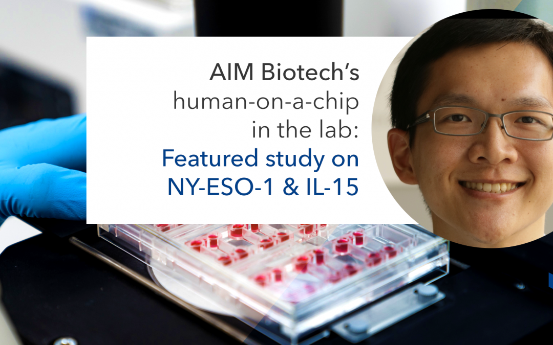 Featured study: modeling the human tumor microenvironment for IL-15 on AIM technology